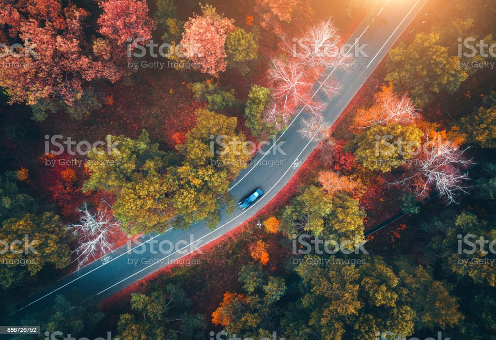Aerial view of road with blurred car in autumn forest at sunset. Amazing landscape with rural road, trees with red and orange leaves in day. Highway through the park. Top view from flying drone.Nature stock photo