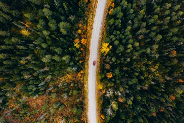 aerial view of rural road in yellow and orange autumn forest in rural finland. - road trip стоковые фото и изображения