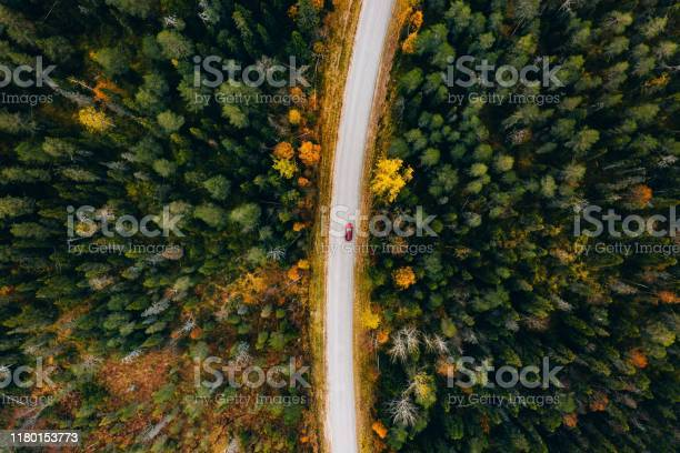 Photo of Aerial view of rural road in yellow and orange autumn forest in rural Finland.