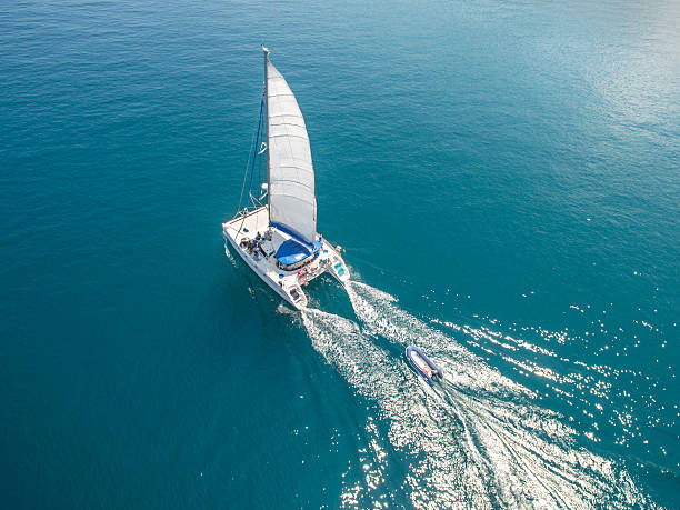 aerial view of sailing boats walking on the sea - katamaran bildbanksfoton och bilder