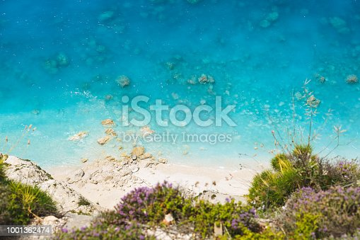 811600544istockphoto Aerial view of sandy wild beach with clear water. Flowering wild thyme at the edge of the cliff 1001362474