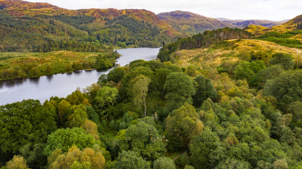 aerial view of scottish rural scene with a loch and woodland - deciduous stock pictures, royalty-free photos & images