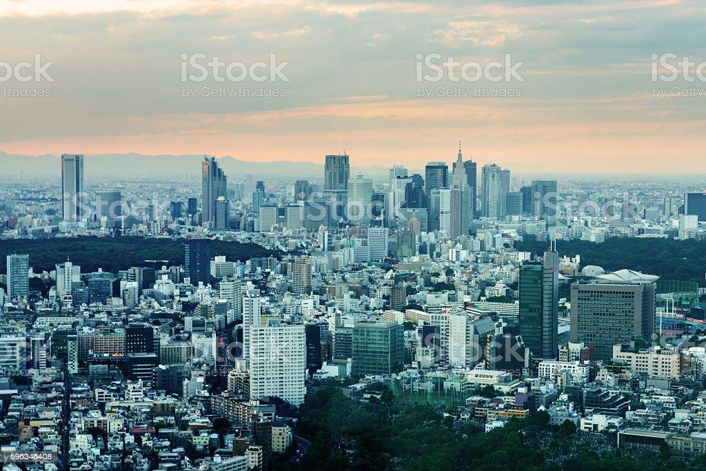 Aerial view of Shinjuku in Tokyo at sunset Lizenzfreies stock-foto