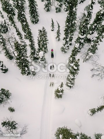 istock Aerial view of sledding with husky dogs in Lapland Finland. 1058280446