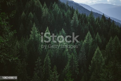 istock Aerial view of summer green trees in forest in mountains 1062459010