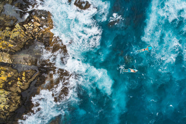 Aerial view of surfers on their surfboards. stock photo