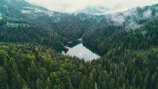 Aerial view of Synevir lake in the  Carpathian Mountains in Ukraine stock photo