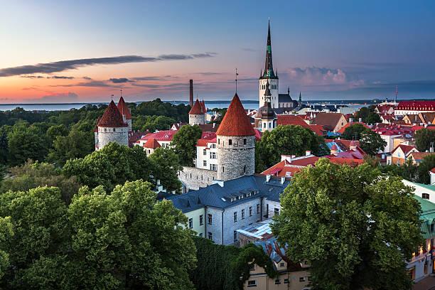 aerial view of tallinn old town from toompea hill - estonya stok fotoğraflar ve resimler