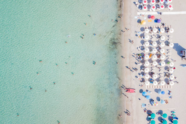 Aerial view of the amazing beach with colorful umbrella and people picture id813974822?b=1&k=6&m=813974822&s=612x612&w=0&h=633bjdcd8vv2wjynur7qqf7fegtznfyqawblajsnoek=