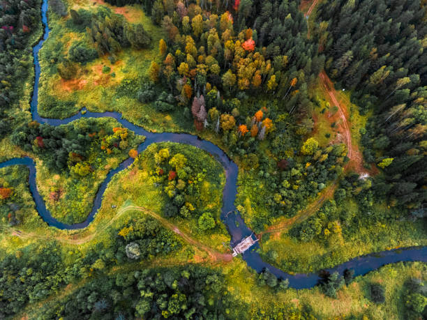 aerial view of the autumn forest - river stock photos and pictures