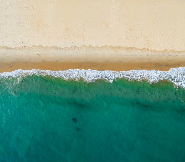 Aerial view of the beach stock photo
