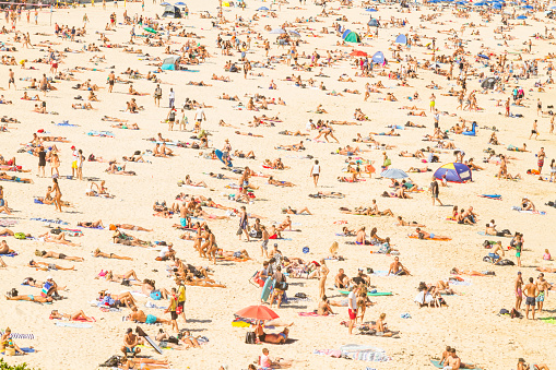 Aerial view of the Bondi Beach, Australia