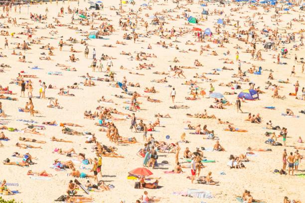 aerial view of the bondi beach, australia - abbronzarsi foto e immagini stock