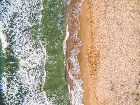 istock Aerial view of the coastline with algae 576908218