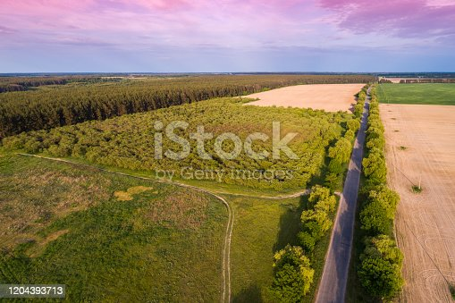 1155573645 istock photo Aerial view of the countryside. The direct country road along the field 1204393713