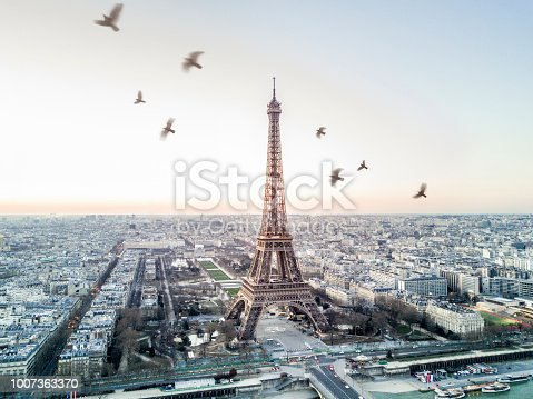 istock Aerial view of the Eiffel tower 1007363370