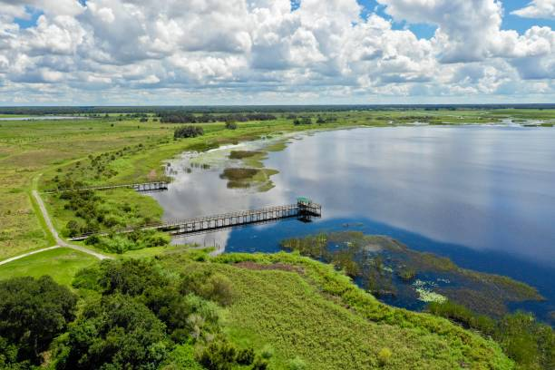 Aerial view of the Everglades stock photo
