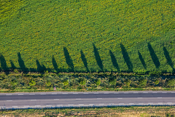 Aerial view of the field, Provence, France stock photo