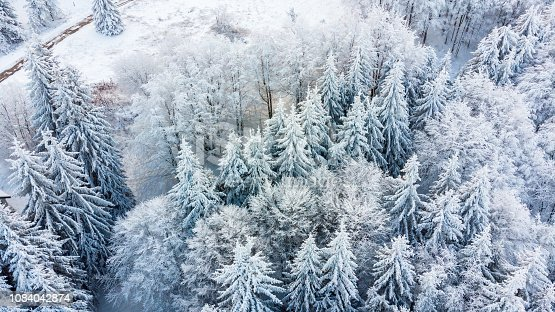 istock Aerial view of the forest at winter. 1084042874