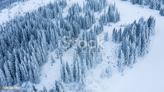 istock Aerial view of the forest at winter. 1090947842