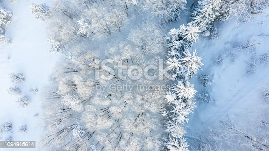 istock Aerial view of the forest at winter. 1094915614