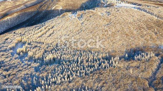 istock Aerial view of the forest at winter. 1094915836