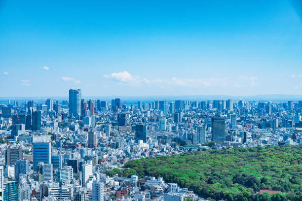 tokyo, japan - april 23, 2017: aerial view of the japanese capital city seen from the metropolitan government building (tokyo city hall) - generic location stock pictures, royalty-free photos & images