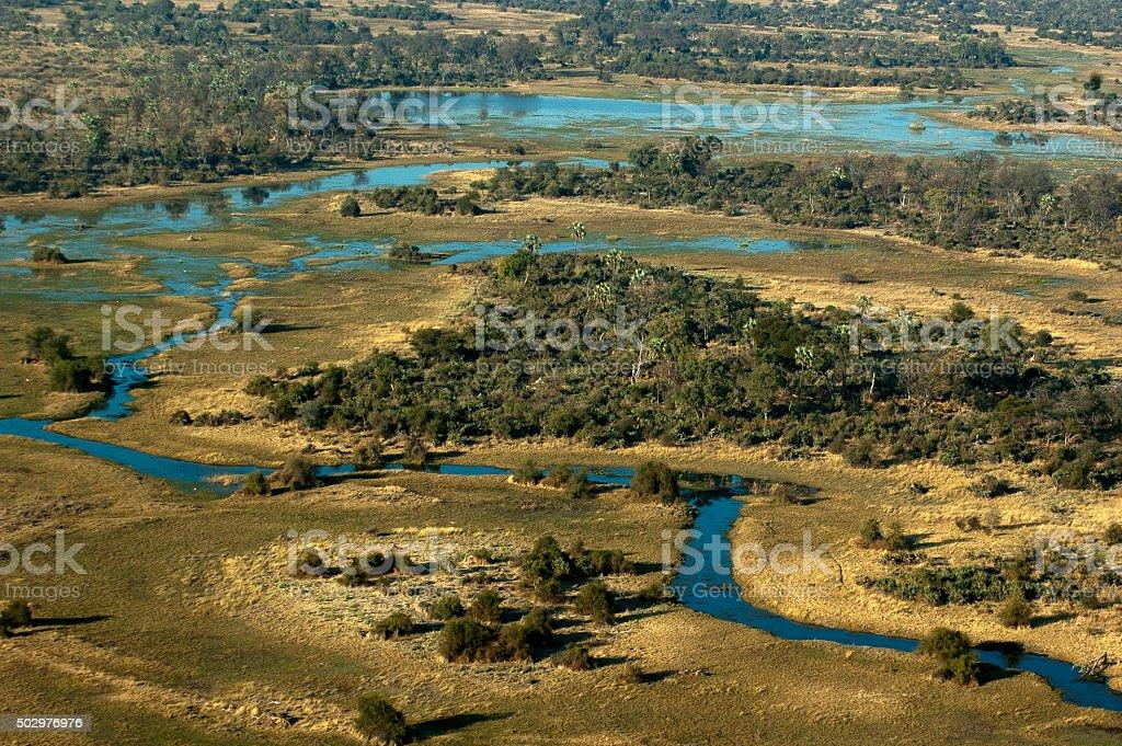 Luftbild von das Okavango Swamp, Moremi Game Reserve, Botswana – Foto