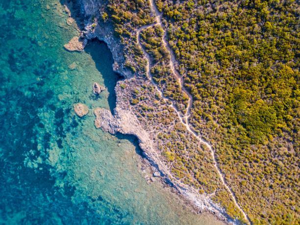 vue aérienne du chemin des douaniers, de la végétation et de maquis méditerranéen, corse, france. - randonnée corse photos et images de collection