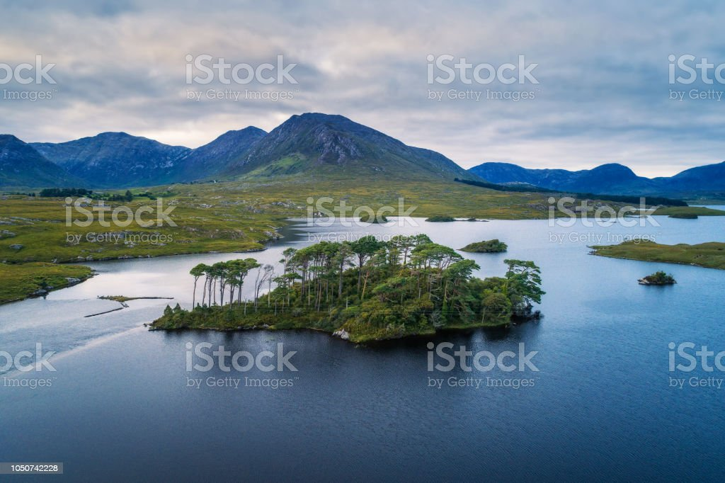 Aerial view of the Pine Trees Island in the Derryclare Lake stock photo