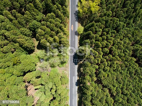 820775768 istock photo Aerial view of the straight way in forest 970759054