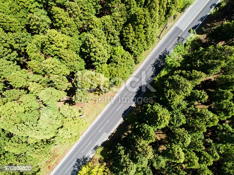 820775768 istock photo Aerial view of the straight way in forest 970809820
