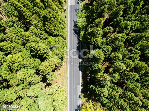 820775768 istock photo Aerial view of the straight way in forest 970809834