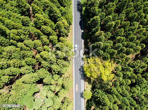 820775768 istock photo Aerial view of the straight way in forest 970809840