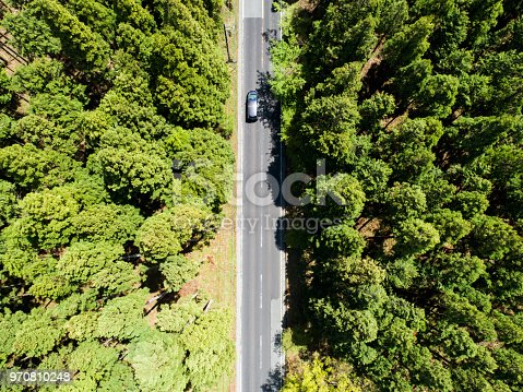 820775768 istock photo Aerial view of the straight way in forest 970810248