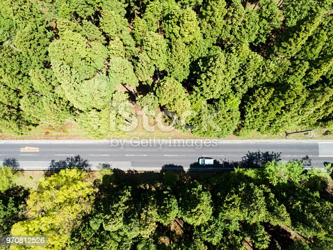 820775768 istock photo Aerial view of the straight way in forest 970812526