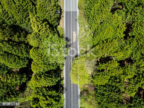 820775768 istock photo Aerial view of the straight way in forest 970812742