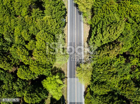 820775768 istock photo Aerial view of the straight way in forest 970812870