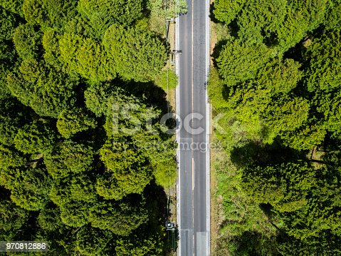 820775686 istock photo Aerial view of the straight way in forest 970812886