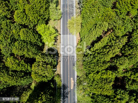 820775768 istock photo Aerial view of the straight way in forest 970813142