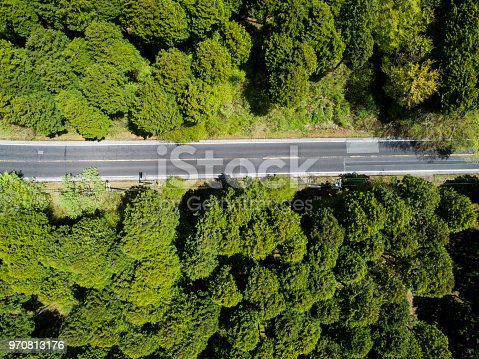 820775768 istock photo Aerial view of the straight way in forest 970813176