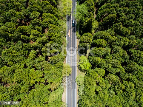 820775768 istock photo Aerial view of the straight way in forest 970813552
