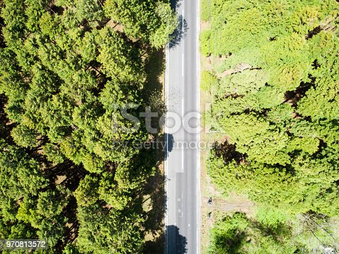820775768 istock photo Aerial view of the straight way in forest 970813572