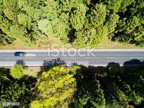 820775768 istock photo Aerial view of the straight way in forest 970816010