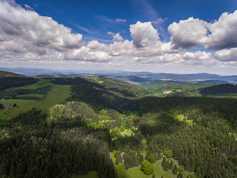 Aerial view of the summer time in mountains near Czarna Gora mountain in Poland. Pine tree forest and clouds over blue sky. View from above.