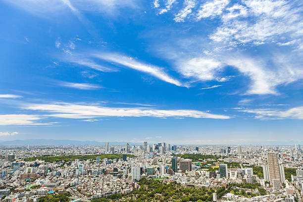 Aerial View of the Tokyo City, Japan ストックフォト