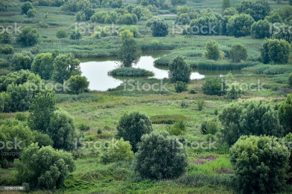 Aerial view of the Vacaresti Nature Park in Bucharest stock photo