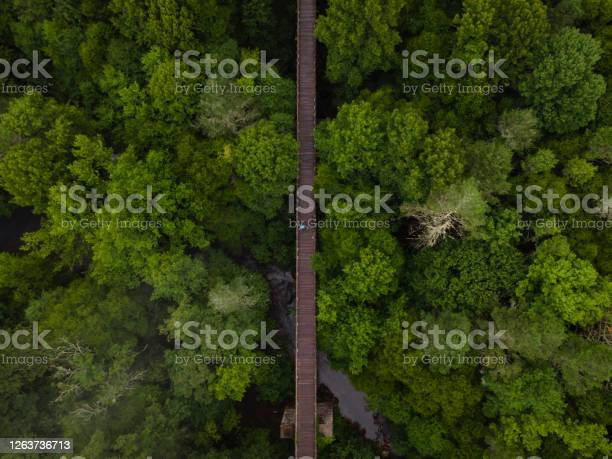 Photo of Aerial View of the Virginia Creeper Trail