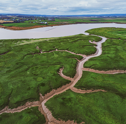 Aerial drone view of a tidal mudflat/grass at low tide on the Bay of Fundy.