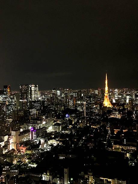 上空から見た東京のタワーの夜 ストックフォト